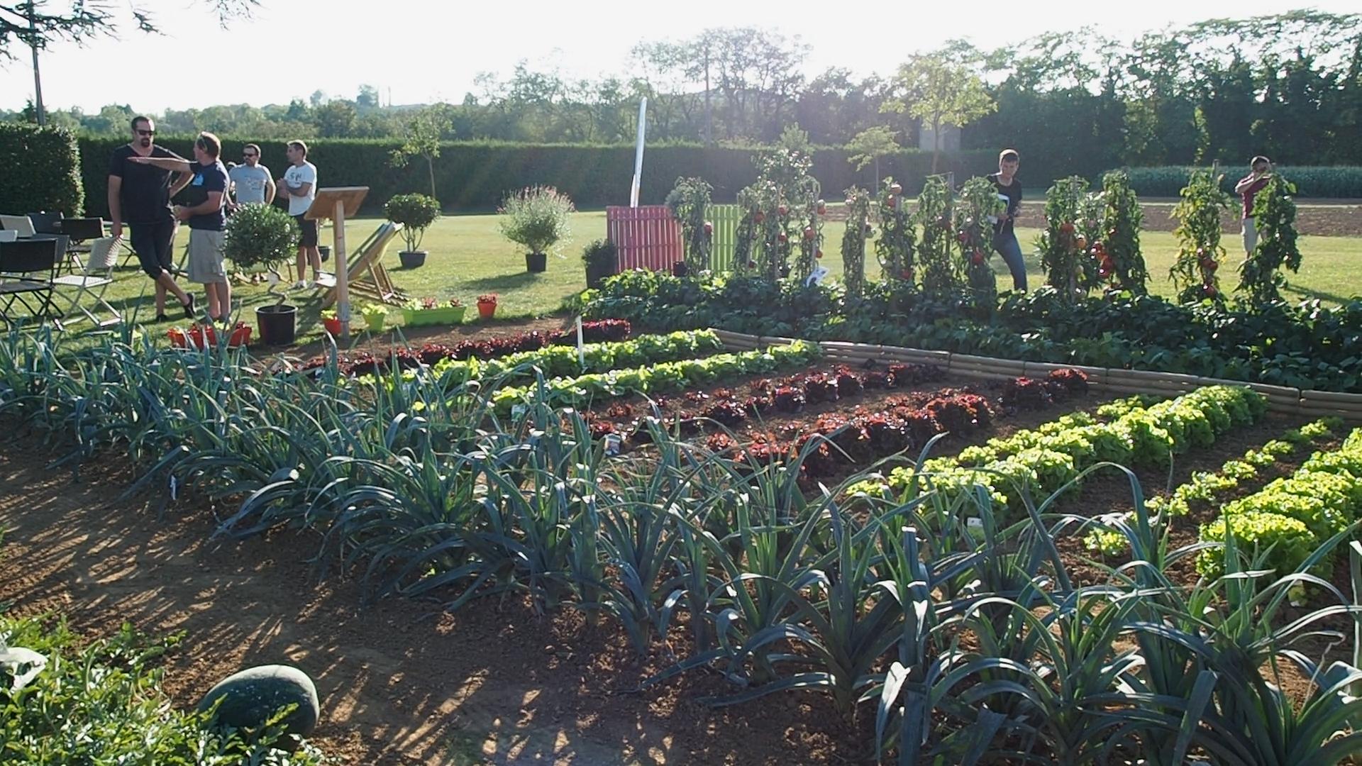 Conf rence potager for 1001 trucs et astuces pour le jardin