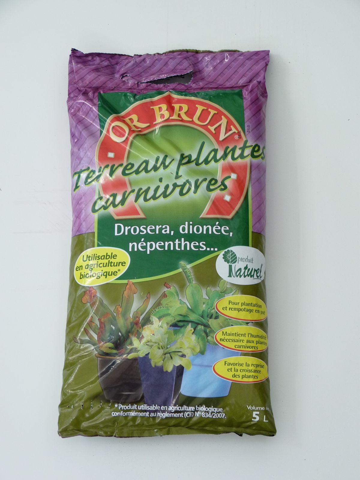 plante carnivore terreau